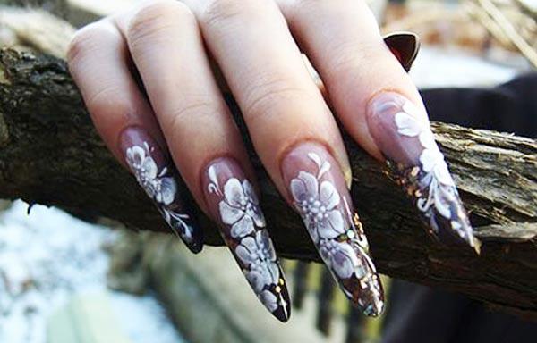 diseño de uñas en fotos - garra